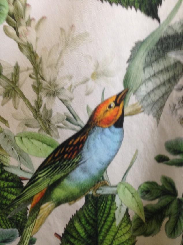 Fugler detalj